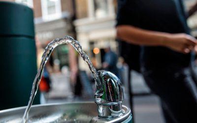 Bebederos de agua, un facilitador de bienestar